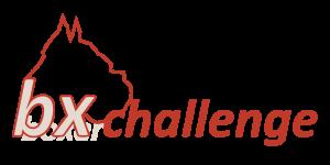 bx-challenge