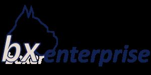 bx-enterprise
