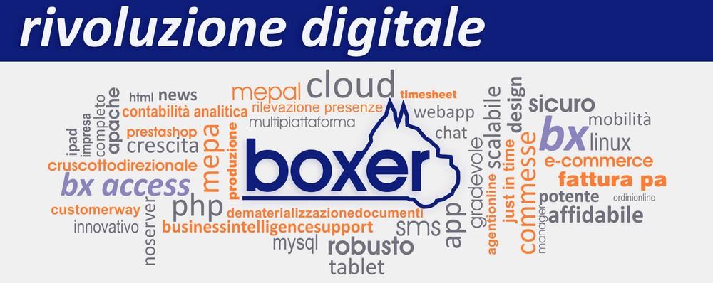 boxer-sistemisrl